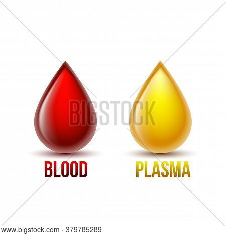 Drop Of Blood And Drop Of Blood Plasma. Blood Components.