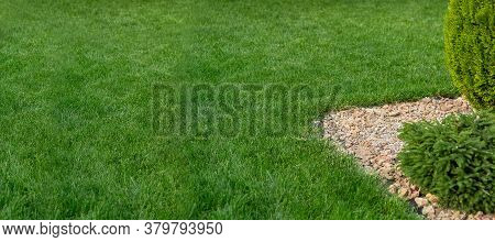 Glade With Green Lawn With Copy Space Of The Park's Landscape Design, Backyard With Grass And Bush I