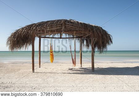 Natural And Tropical Hut On The Beach Caribbean Ocean Front, Desert Beach Whit Hammock On A Beach In