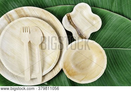 Kitchenware Made From Dried Betel Nut Leaf Palm, Natural Material. The Green Product Eco Friendly Co