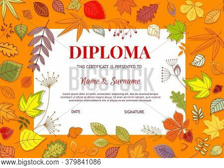 Kids Diploma With Autumn Leaves Vector Template. Educational Kindergarten, College Or Kid School Cer
