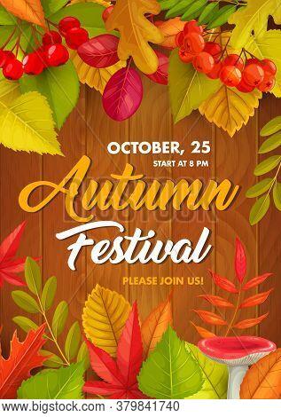 Autumn Festival Vector Flyer, Fall Holiday Invitation With Fallen Leaves, Russula Mushroom And Rowan