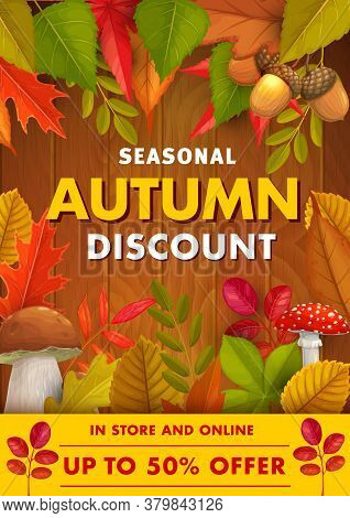 Autumn Discount, Sale Offer Vector Promo With Fall Foliage, Cep, Fly Agaric Mushrooms And Acorns On
