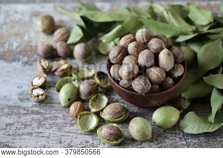 Freshly Walnuts In A Bowl. Harvest Walnuts. Walnuts Peeled From Green Shells. The Leaves Of The Waln
