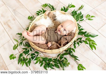 A Small Laughing Child A Boy Lies In A Basket Among Leaves And Looks At The Camera