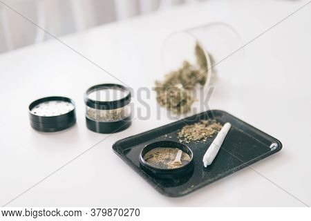 Grinder And Cannabis Weed Bud. Marijuana Nature Bud. The Pot Leaves On Buds Thc Cbd.