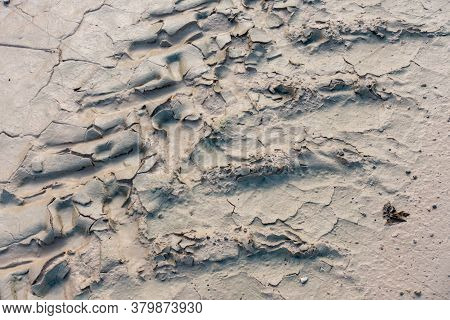 Dried Mud Pattern With Recent Tyre Tracks