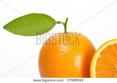 Fresh Orange On White