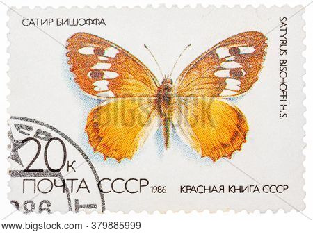 Ussr - Circa 1986: A Stamp Printed In The Ussr Russia Shows A Butterfly With The Inscription Satyrus