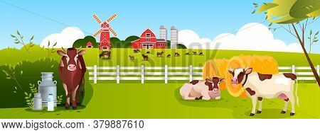 Milk Farm Background With Cows, Bull, Haystack, Mill, Barn, Dairy Products, Grazing Livestock. Husba