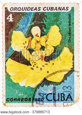 Cuba - Circa 1980: A Stamp Printed In The Cuba Shows Oncidium Leiboldii, Orchid, Circa 1980