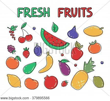 Big Set Of Hand Drawn Fruits And Berries. Fresh Organic Summer Fruits And Berries. Decorative Vector