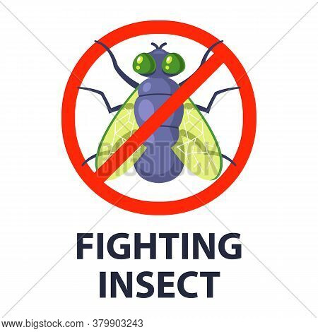 Destroy Flying Insects. Catch Dung Flies. Flat Vector Character Illustration.