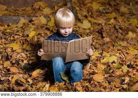 Blond Boy Reading Book In Autumn Forest Sitting On Fallen Leaves. Portrait