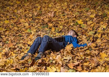 Boy Lying In Park On Fallen Yellow Leaves. Child Is Resting In Autumn Forest.