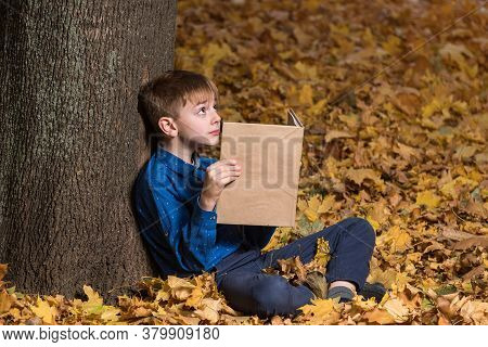 Schoolboy Sitting Near Tree In Fallen Yellow Leaves And Holding Book. Copy Space. Mockup.