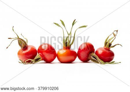 Rose hips from Rosa Rugosa on white background