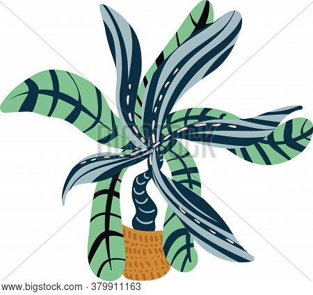 Potted Tropical House Vector Photo Free Trial Bigstock