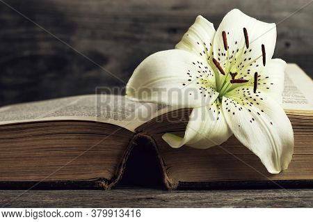 Sympathy Card. Lily Flower On Open Book