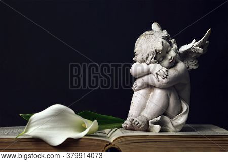 Sleeping Angel And White Calla Lily On Dark Wooden Background