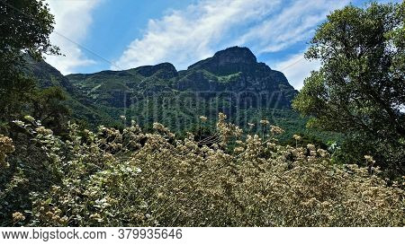 South African Landscape. Green Mountain Peaks Loom Against The Blue Sky With White Clouds. In The Fo