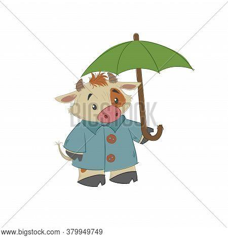Cute Bull, Ox Or Bison Taking An Umbrella. 2021 Chinese Year Of Bull Symbol. Cartoon Hand Drawn Styl