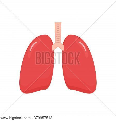 Lungs Icon In Flat Style. Internal Human Organ Vector Illustration Isolated On White Background.