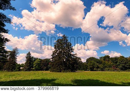 Wide-angle Nature Landscape View Of Large Lawn With Trees Against Blu Sky. It Is One Of The Most Fam