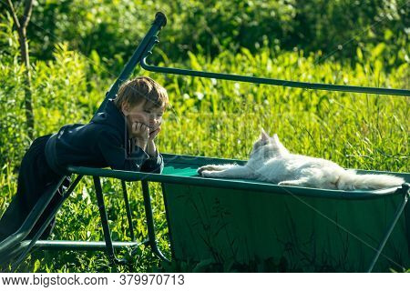 A little boy is playing with white cat, outdoors.