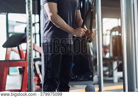 Sportsman Doing Exercises With Cable Machine Tricep In The Fitness Gym, Fit Exercising Focus Bicep A