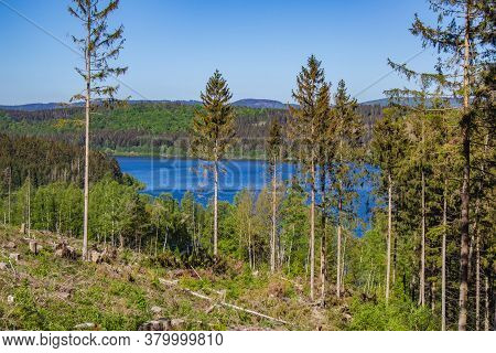View Of Granestausee Reservoir With Partly Deforestation In The Front, Harz Mountains National Park,