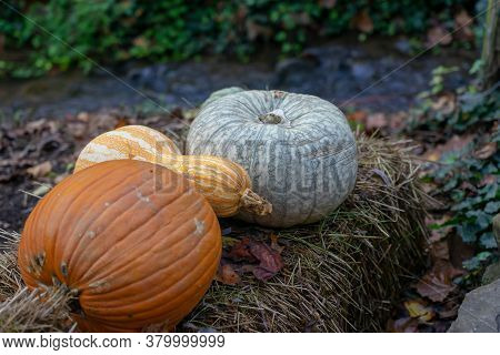 Pumpkin Sitting On Large Hay Bail For Fall