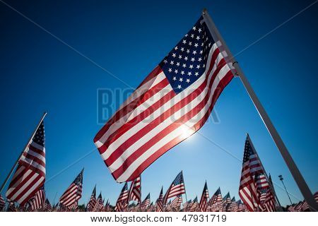 A display of many American flags with a sky blue background, commemorating 9/11, memorial day, or veterans day