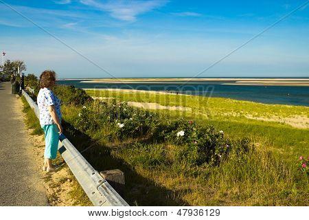Woman Looks At A  Cape Cod Beach