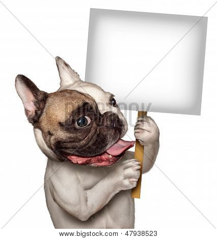 Bull Dog Holding A Sign