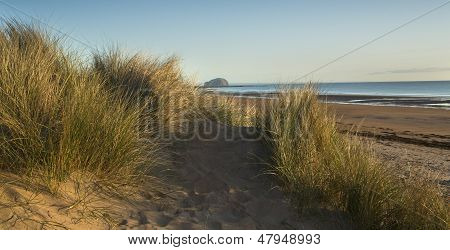 View of Bass Rock with eraly morning sun on Grass and beach