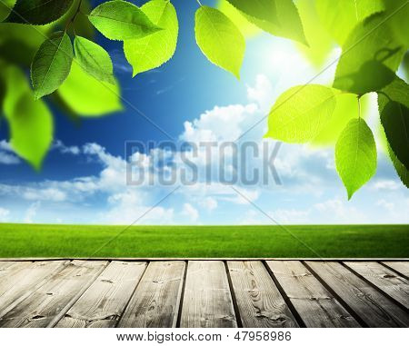 spring sunny background and wooden surface