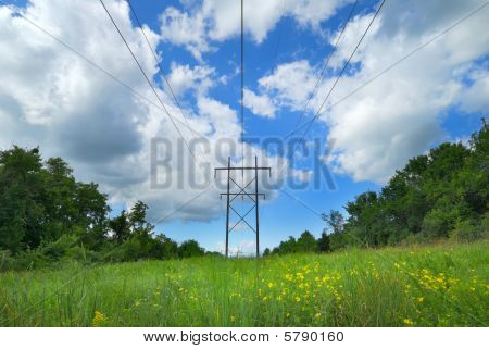 Utility Lines In Pasture