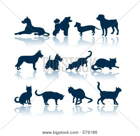 poster of Dogs and Cats 12 silhouettes