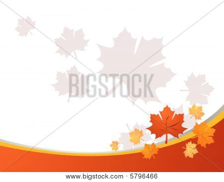 Autumn leaves vector illustration art on white poster