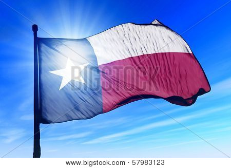 Texas (USA) flag waving on the wind