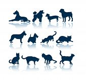 Dogs and Cats 12 silhouettes poster