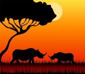 Silhouettes of a rhinoceros against a decline in a safari poster