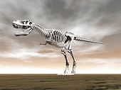 Tyrannosaurus rex skeleton on the ground by cloudy day poster