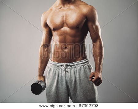 Masculine Man In Holding Dumbbell On Grey Background