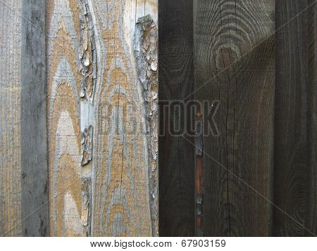 Close-up of old boards