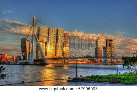 View of Rotterdam city with Erasmus bridge - Netherlands poster