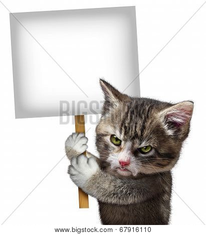Angry Cat Holding Sign