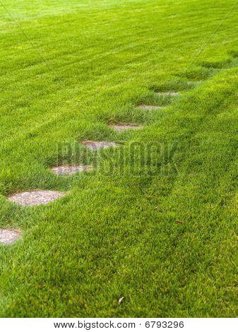 Stone Path Through A Green Grassy Lawn Background