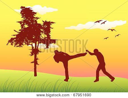 Silhouette Of Two Men Making Kickboxing Exercises On Summer Field Near Tree, Yellow Sky
